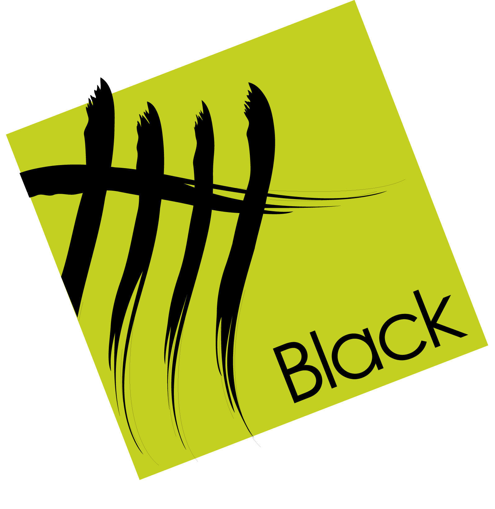Black Real Estate Group